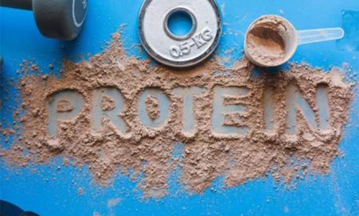 Micronutrición y dietas de aporte proteico